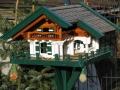 vogelhaus-balve-1