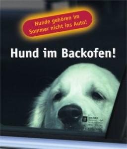 Hund_im_Backofen